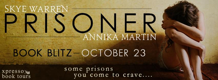 Prisoner Blitz Banner