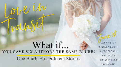 RELEASE BLITZ & GIVEAWAY: LOVE IN TRANSIT by 6 Wonderful Authors